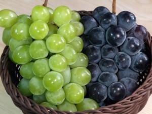 20120917_grape_3083_w2400